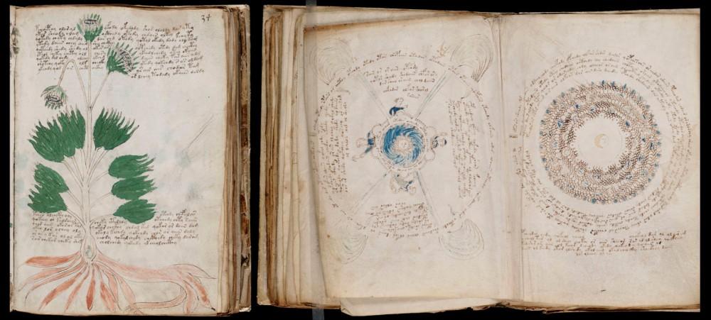 Mostra dos debuxos de plantas e astros presentes no manuscrito.